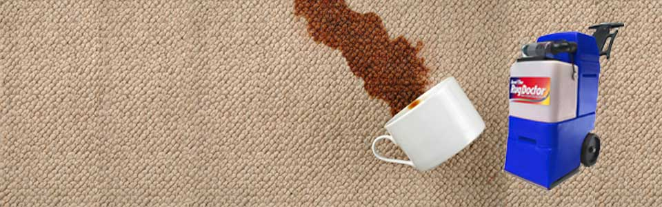 Woolworths carpet cleaner hire cost woolworths carpet cleaner free hire carpet cleaner woolworths idea with woolworths carpet cleaner hire cost solutioingenieria Choice Image